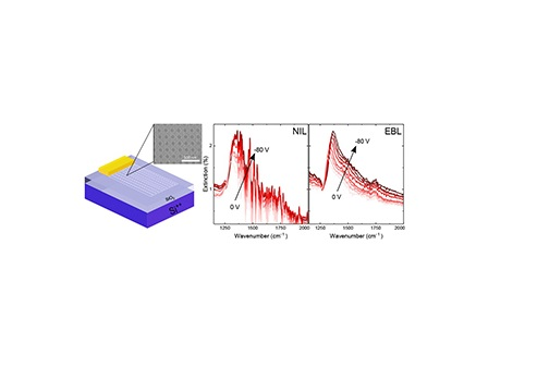Electrostatic tuning of the plasmonic peaks in graphene nanostructures fabricated by nanoimprint lithography