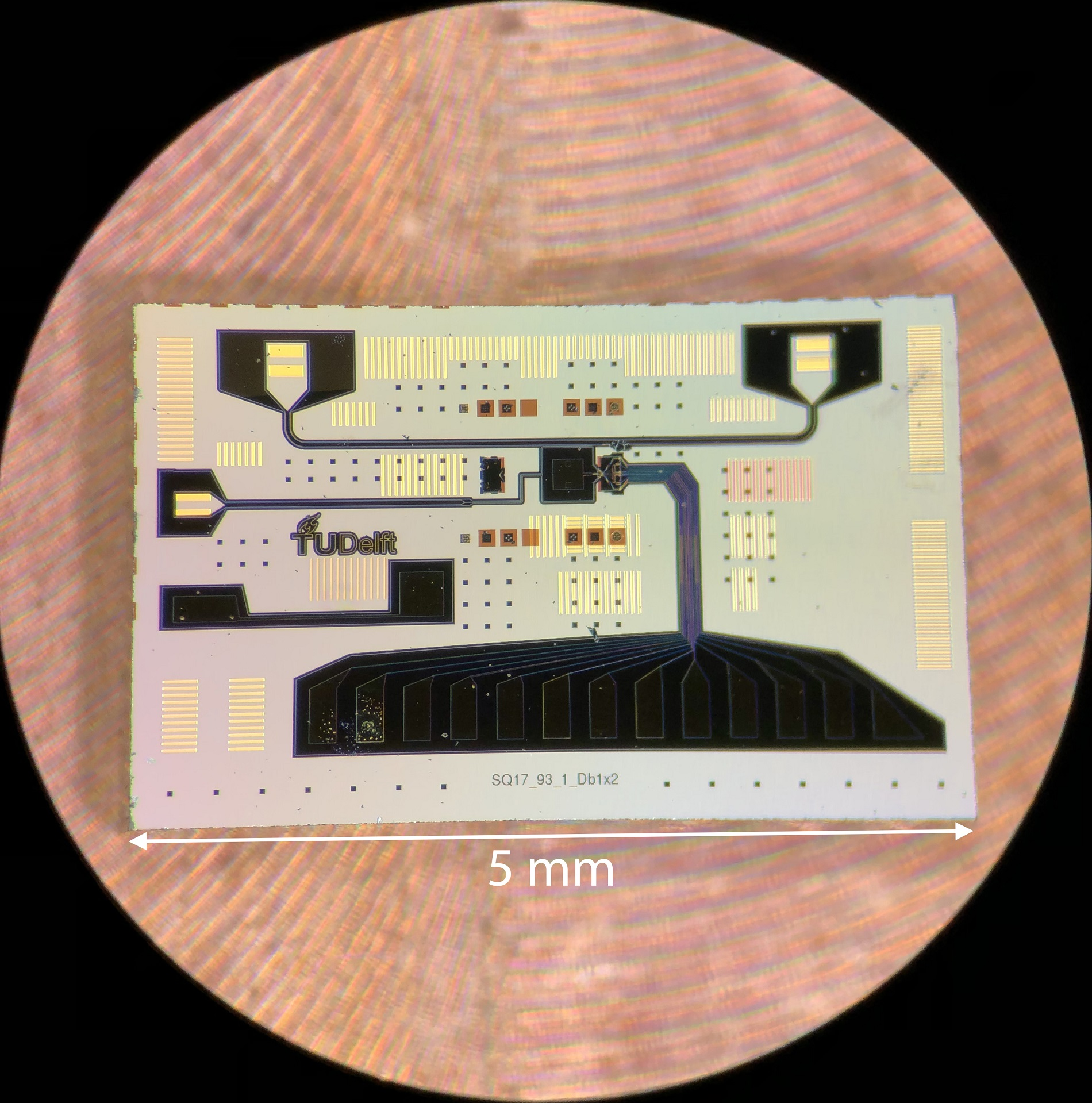 Optical microscope image of the quantum chip with the on-chip resonator and quantum dots