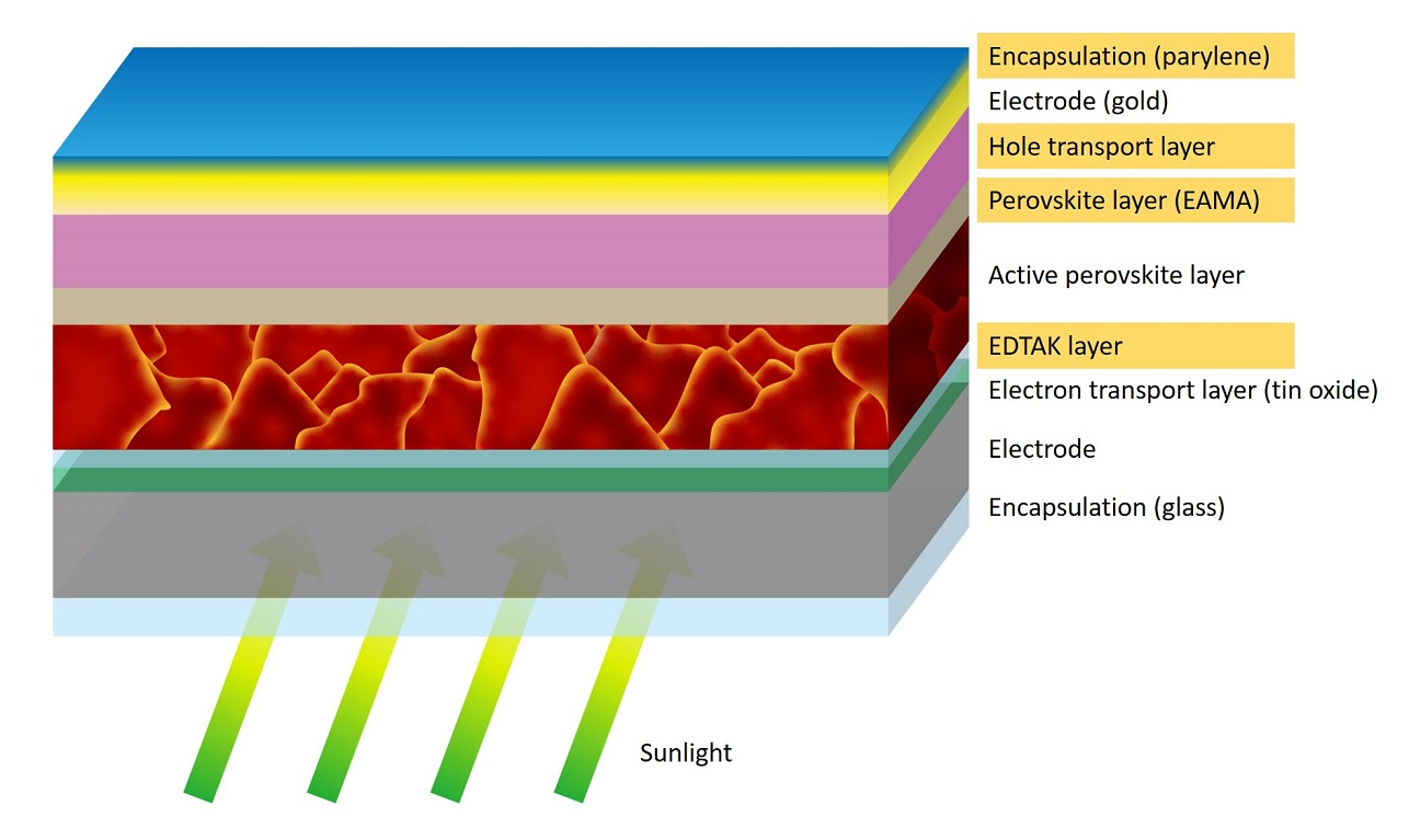 Perovskite solar cells and modules consist of many layers, each of which has a specific function. The scientists added or modified the layers highlighted in orange.