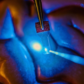 A blue light shines through a clear implantable medical sensor onto a brain model