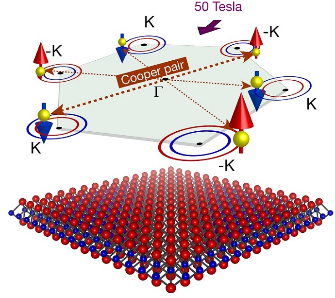 Unconventional Cooper pairs protected by spin-valley locking in superconducting MoS2