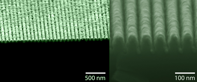 "SEM images of a ""lossless"" metamaterial that behaves simultaneously as a metal and a semiconductor"