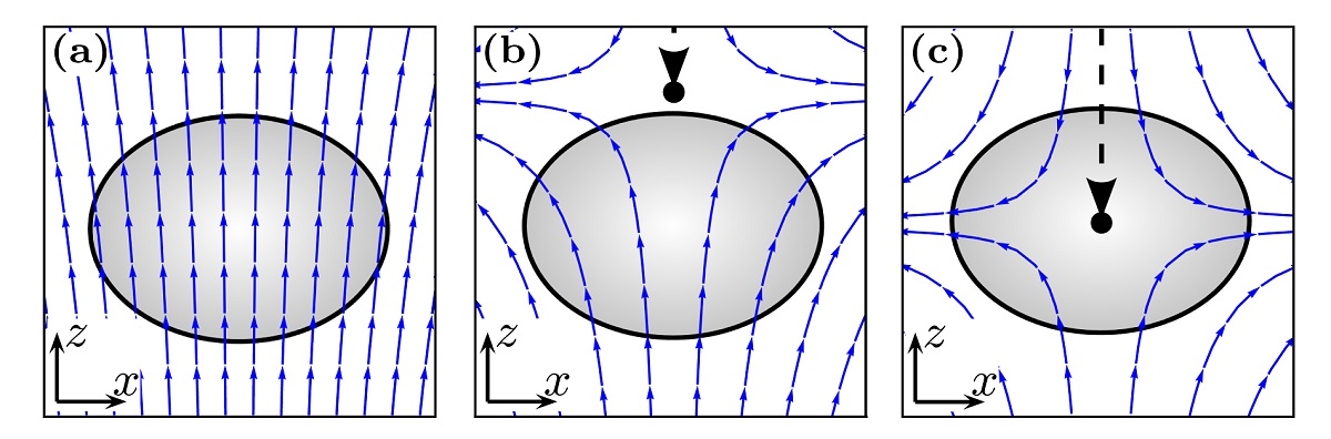 Schematic illustration of the creation process of the quantum monopole.