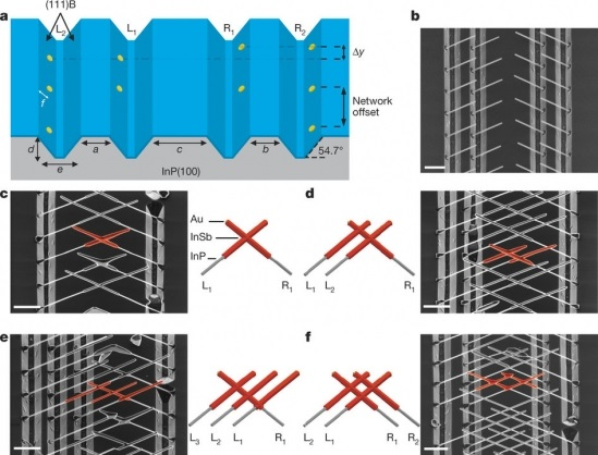Deterministic growth of InSb nanowire networks