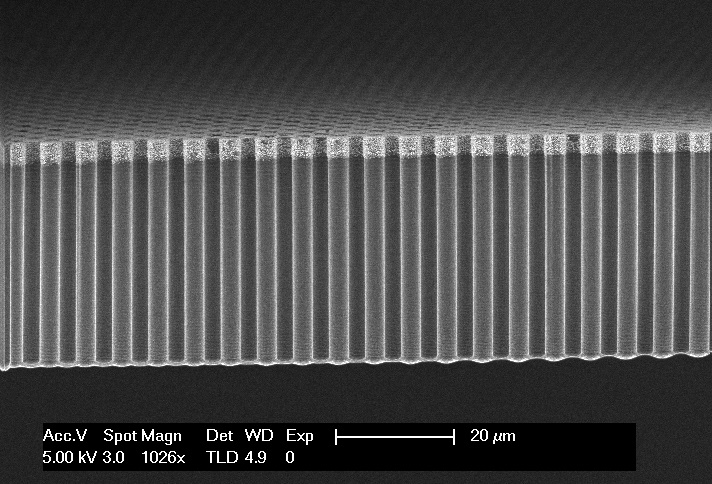 Microwires for solar fuel conversion