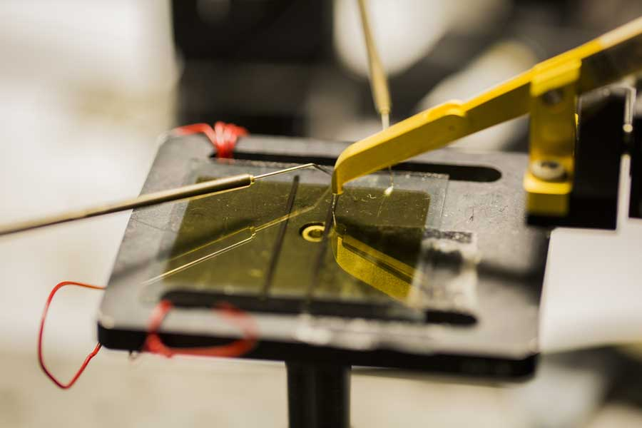 An organic solar cell testing inside the Randall Lab