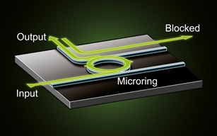 Concept of the microring diode