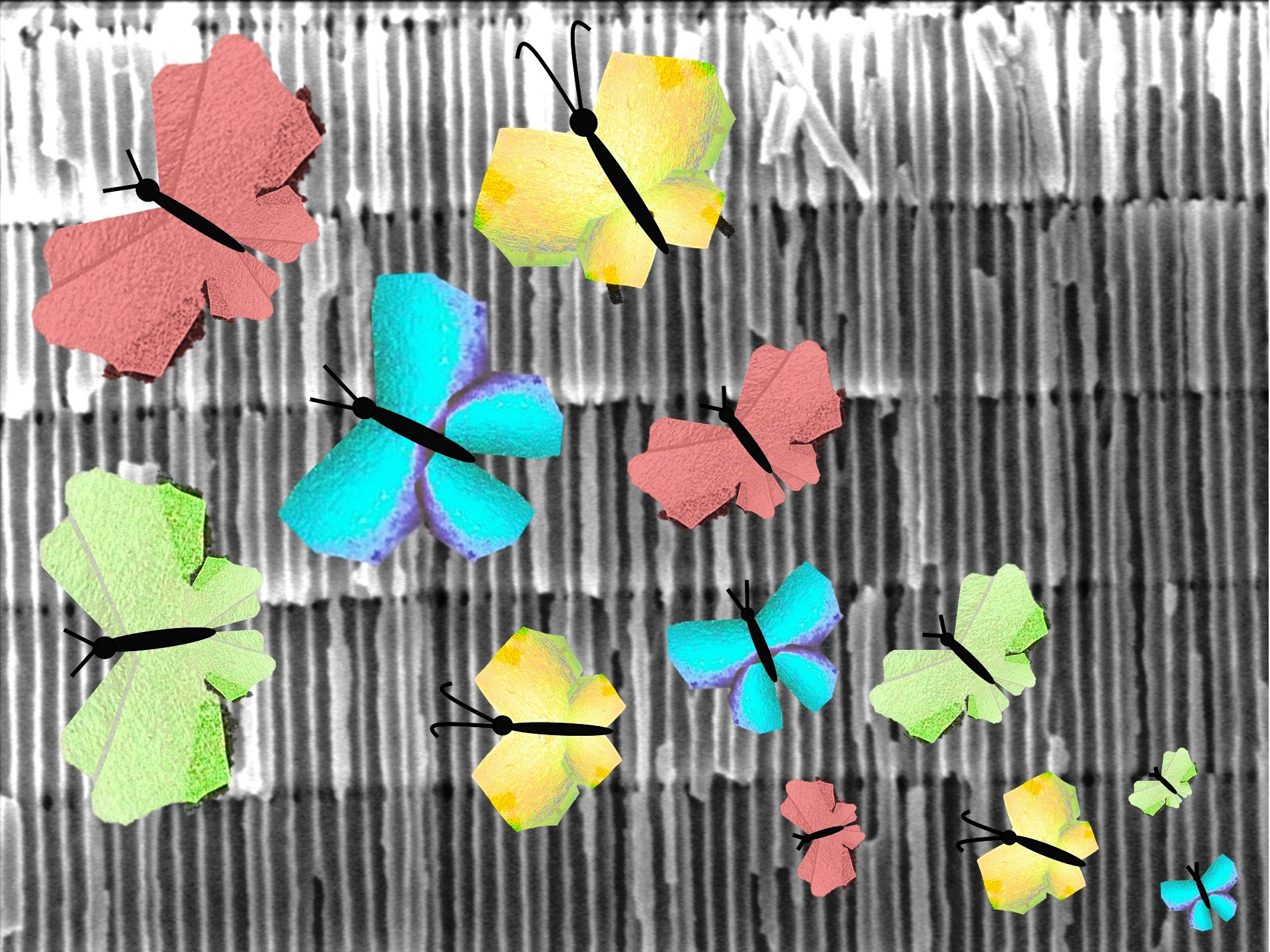 Intricate meso-scale internal structure of the all-dielectric porous metamaterials enables structural color formation akin to that displayed by colorful butterfly wings